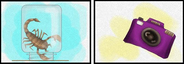 akrebin-turunu-tespit-etmek