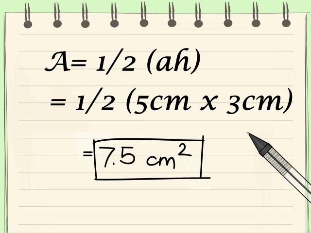 ucgenin-alanini-hesaplama-adim4